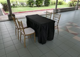 Tiffany chair with rectangle table