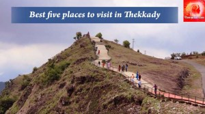Kerala : Best Five Places to Visit in Thekkady