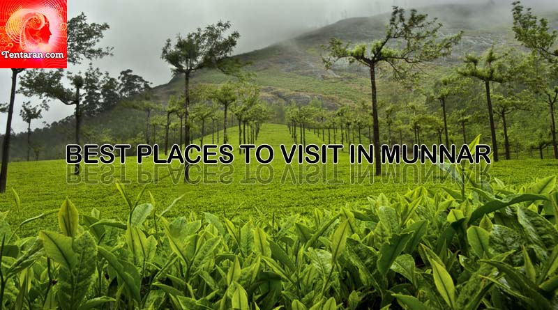 Best five places to visit in Munnar