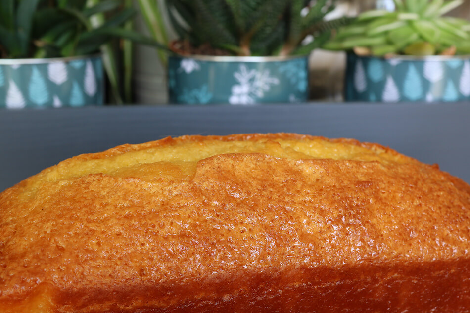 Cake citron olive
