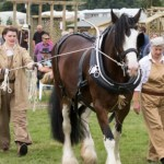 Tenterden Lions are at the Biddenden Tractorfest on the 19th and 20th August