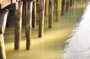 Horizontal and vertical lines- pilings in the water. Photo by Kevin McConnell