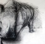 The End of Us (Northern White Rhino), 6 feet x 5.5 feet, charcoal on paper (Original). Prints: available, prints sizes varies).