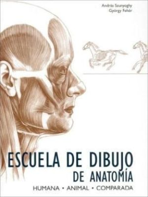 Anatomia animal 3
