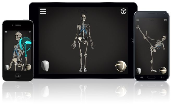 Skelly-App-Devices_2.0