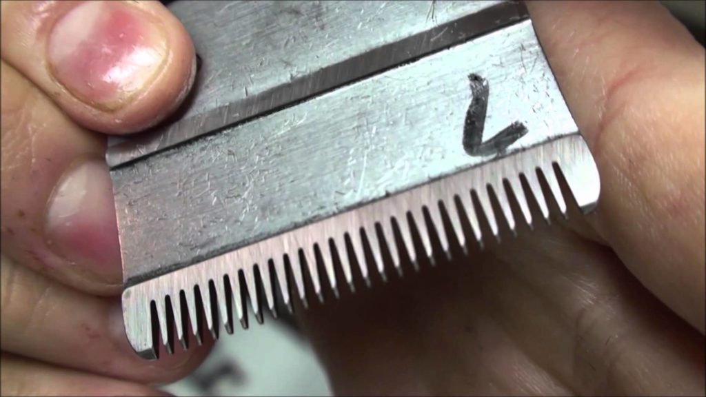 How To Sharpen Clipper Blades Topmost Guide 2018