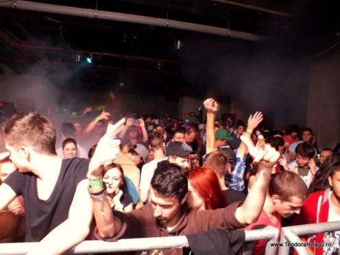 Transilvania Music Event Cluj Arena 2013 Day 1 (86)