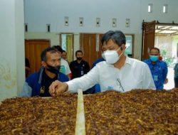 Kemenperin akan Optimalkan Penyerapan Tembakau Lokal