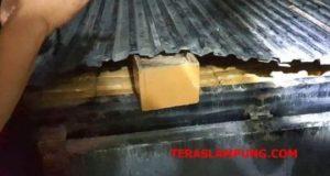 Paket ganja 239 Kg asal aceh yang disimpan di bak mobil L300 yang sudah dimodifikasi saat diamankan tim gabungan BNN pusat, BNNP Lampung, Satres Narkoba Polres Lamsel dan KSKP Bakauheni dari dua kurir, Syarif dan Aris.