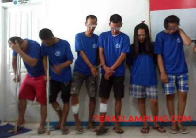 Enam pelaku pengedar narkoba yang ditangkap BNNP Lampung.