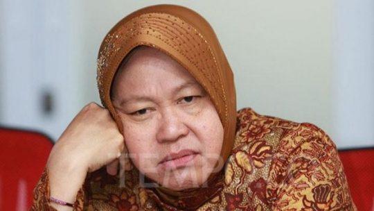 Wali Kota Surabaya Tri Rismaharini. TEMPO/Bintari Rahmanita