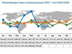 Perkembangan Impor Lampung Januari 2017 – Juni 2019