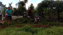 Belasan warga Kelurahan Sekincau, Kecamatan Sekincau, Lampung Barat bergotong royong menyiapkan liang lahat untuk pemakaman jenazah pasien virus corona yang meninggal di RSU Abdul Moeloek, Sabtu (4/4/2020).