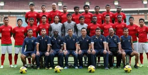 Timnas Indonesia 2013
