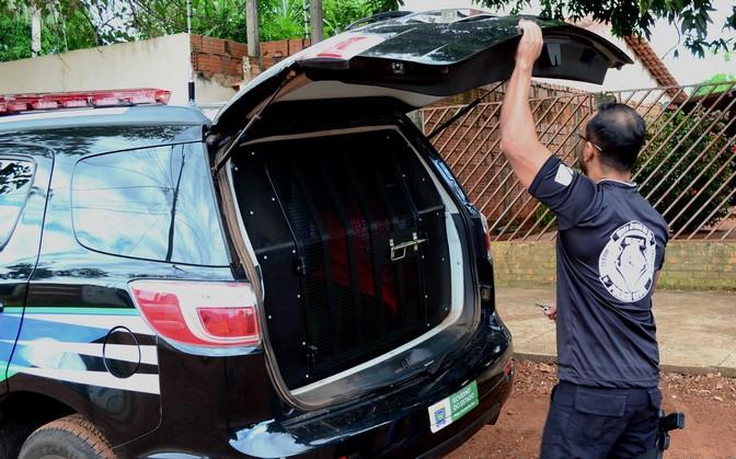 Traficante é preso em boca-de-fumo com cocaína e munições no Jardim Tarumã