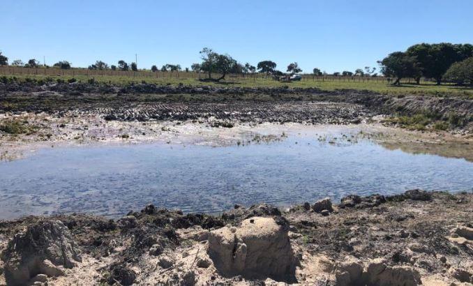 PMA autua infrator por construir lagoa em áreas protegidas em sua propriedade