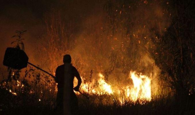 Crime ambiental: Multa para quem atear fogo em terreno baldio em MS pode chegar a R$ 10 mil – vídeo
