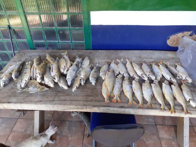 PMA autua peixaria por comercializar pescado sem declaração de estoque