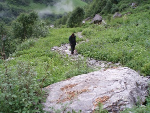 Suresh on the track in the Valley of Flowers India 2006