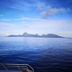 Terevau arriving to Moorea in the morning Patricia