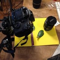 Macro photography set-up