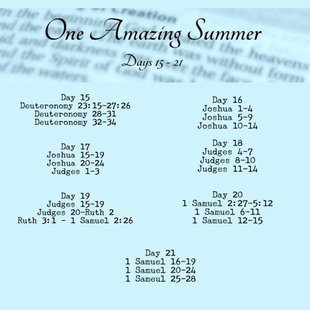 BIble in 90 Days Readings Week 3 www.terilynneunderwood.com