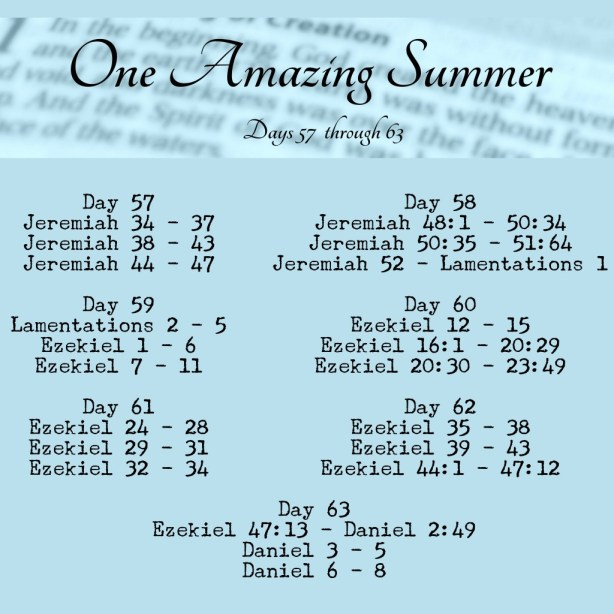 One Amazing Summer Bible in 90 Days readings www.terilynne.com