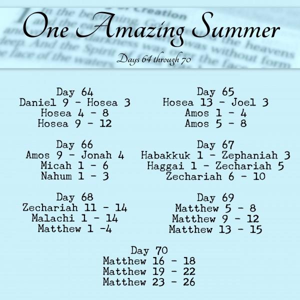 Bible in 90 Days readings days 64 - 70 www.terilynneunderwood.com