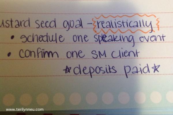 mustard seed goals www.terilynneunderwood.com