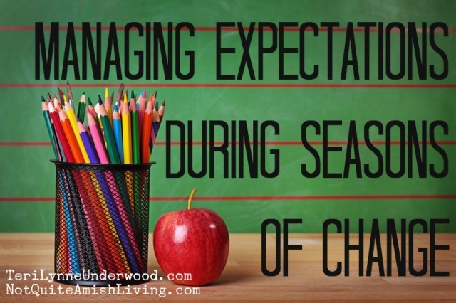 managing expectations || Teri Lynne Underwood || www.notquiteamishliving.com