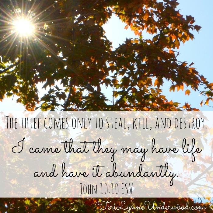 John 10:10 || Sunday Scriptures || TeriLynneUnderwood.com