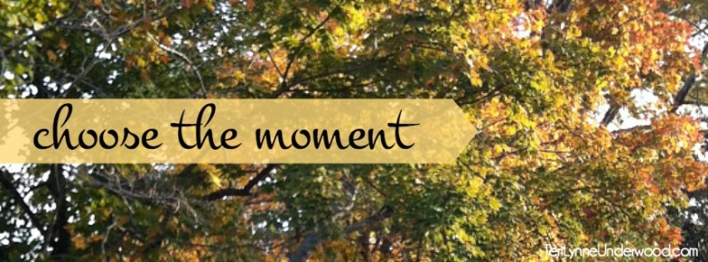 choose the moment