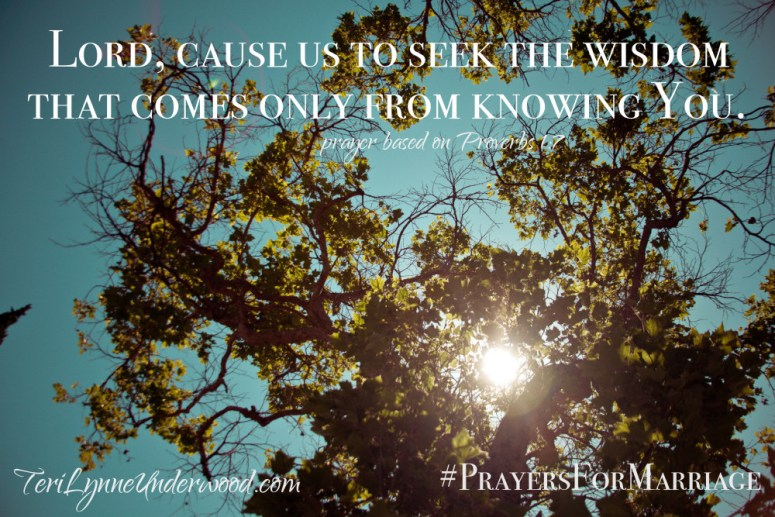 31 Verses to Pray for Your Marriage || Proverbs 1:7