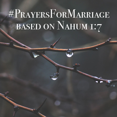 31 Verses to Pray for Your Marriage || Nahum 1:7