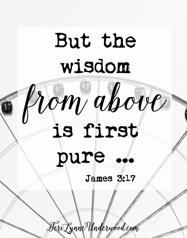Wisdom from God is the foundation of a counter cultural life.