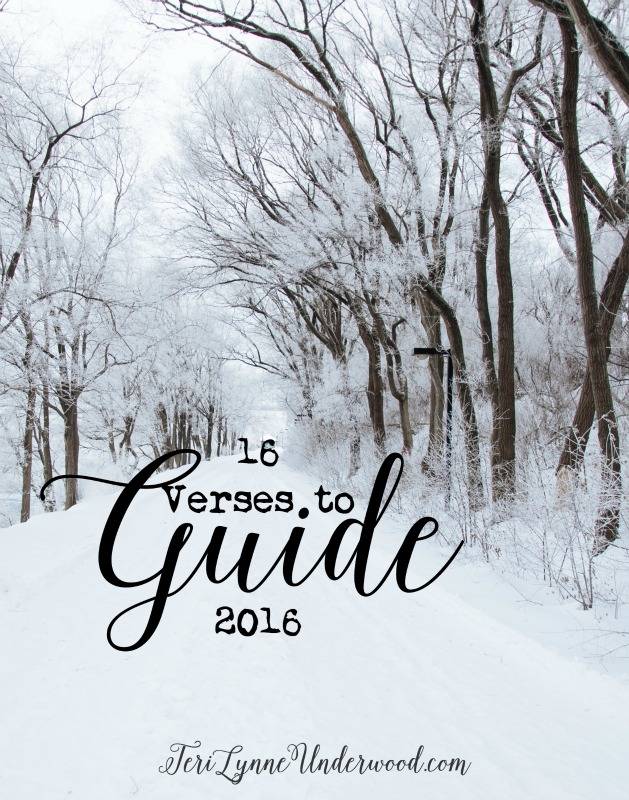16 verses to guide 2016: identifying specific Scripture to define and shape the coming year