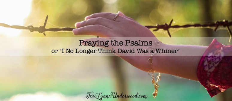 David did something I haven't always done—David took it all to the Lord. And all that taking it to the Lord became a whole bunch of Psalms—prayers and songs of heartache and fear and worry and praise and celebration.
