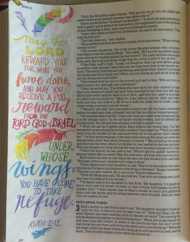 HCSB Illustrator's Notetaking Bible