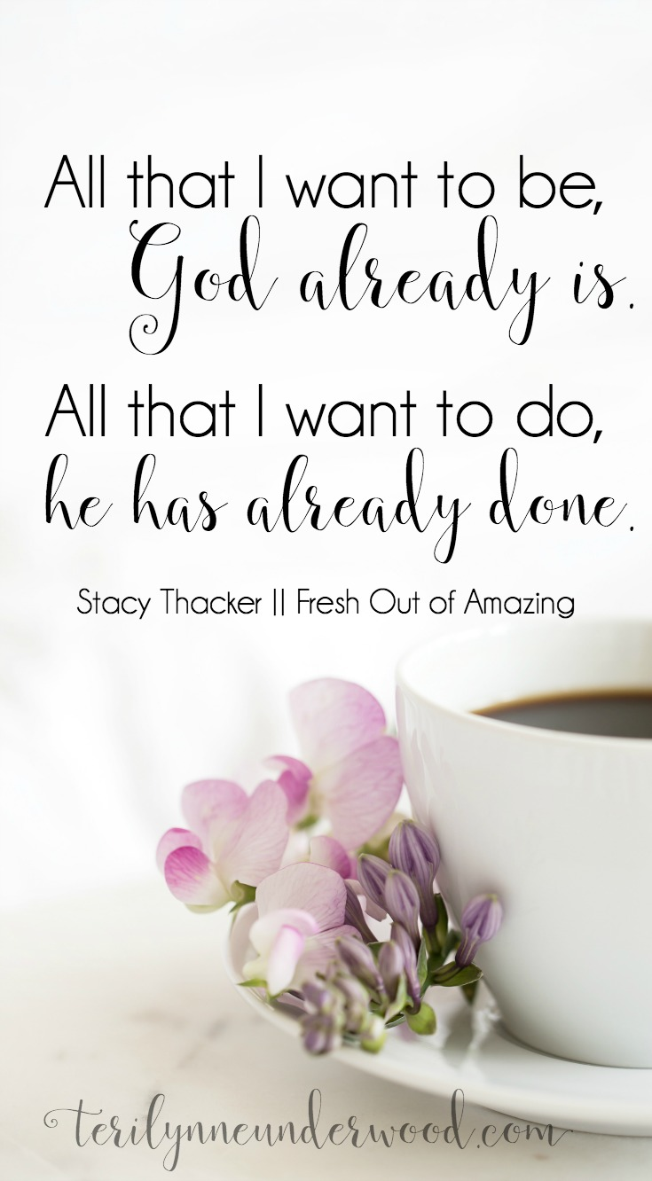 """Stacey Thacker's newest book, """"Fresh Out of Amazing"""" is one I would give to every woman I know!"""