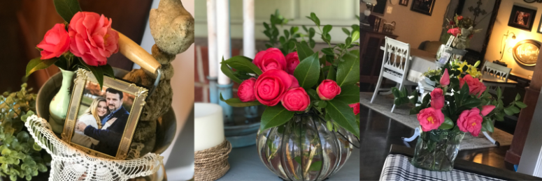 10 Things I'm Loving {March 2019} ... I can't get over these camellias!
