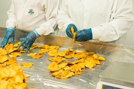 Termopix - Desinfecção de Áreas de Processamento de Alimentos - Termovaporização