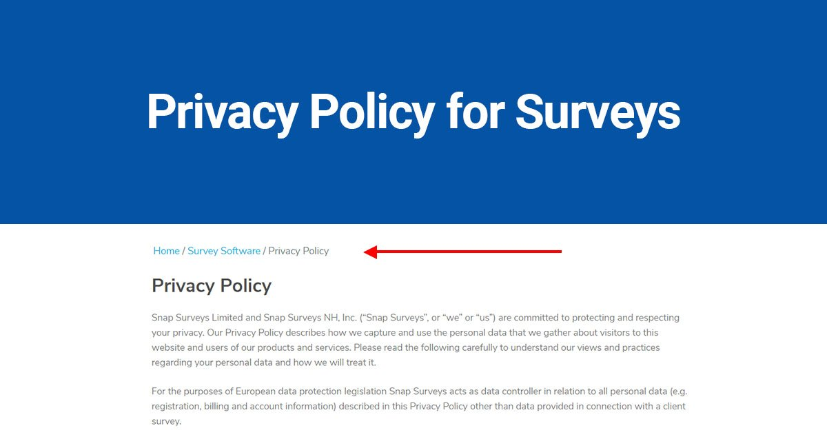 Privacy Policy For Surveys