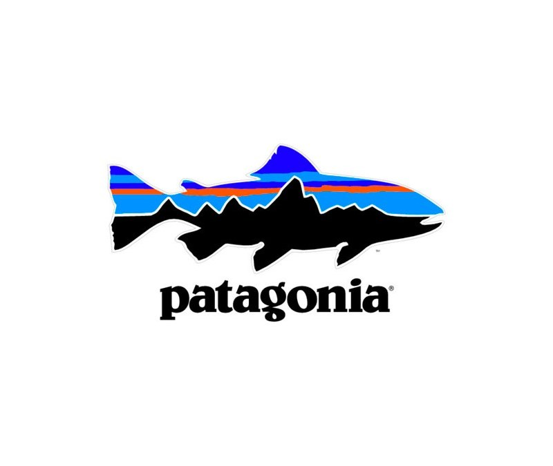 Patagonia: How to promote sustainability in the world of fast fashion