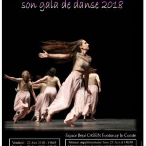 Gala Terpsichore 2018
