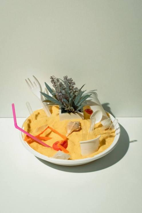 Nicola Biscaro, Natura plastica