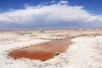 Laguna de água vermelha - Laguna Chaxa