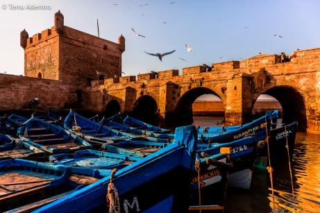 Marrocos-4379