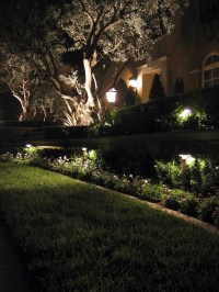 7 Inspirational Ideas For Outdoor LED Landscape