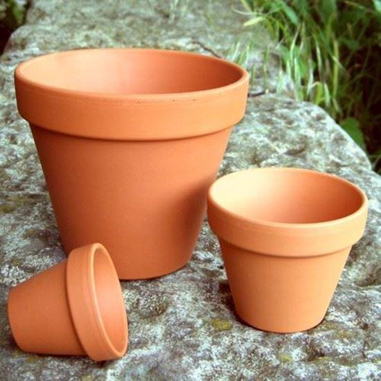 Medium Terracotta Pots