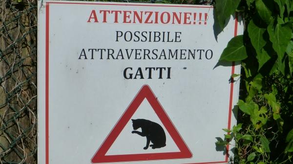 insolito cartello a monte isola